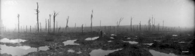 WW1 battlefield
