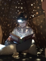 Annie Book